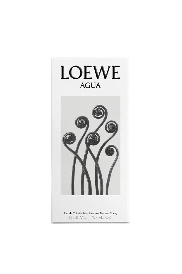 LOEWE Agua Él