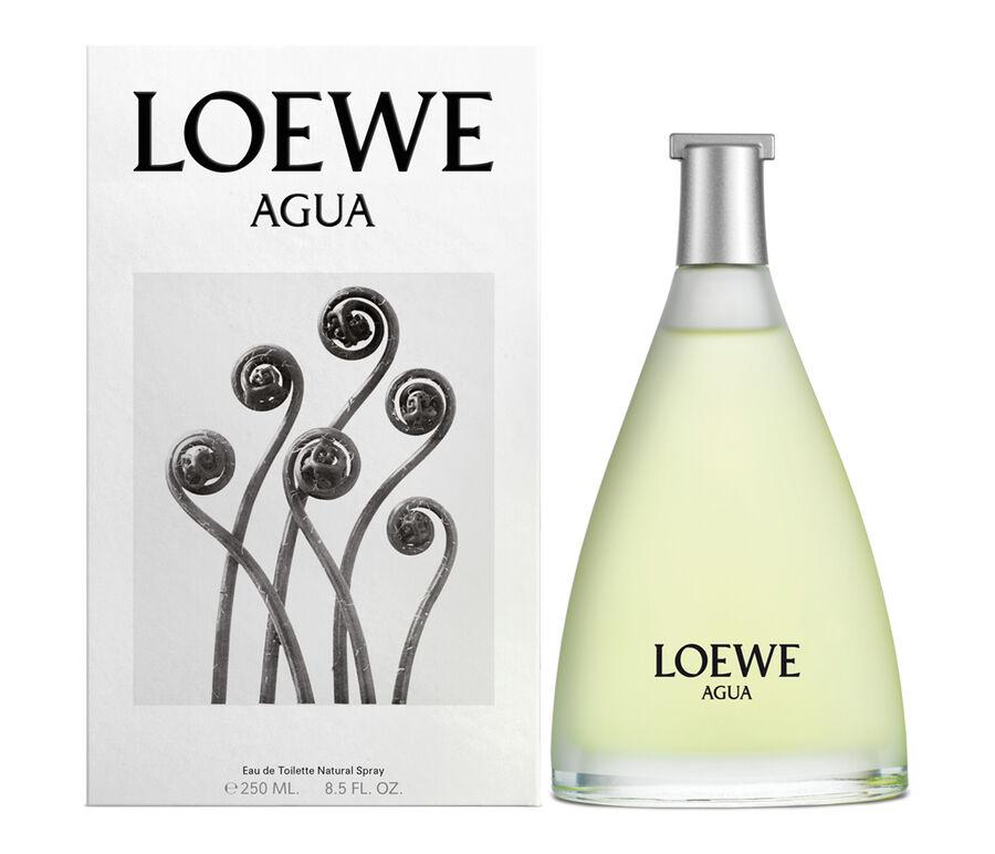 LOEWE Agua EDT Classic