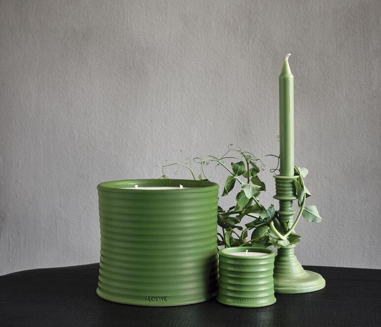 Luscious Pea wax candleholder