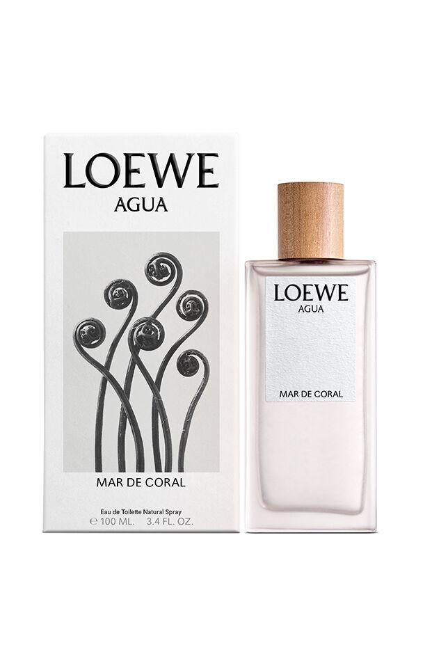 LOEWE Agua Mar de Coral
