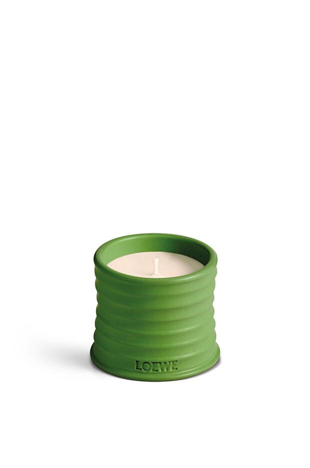 Luscious Pea Candle