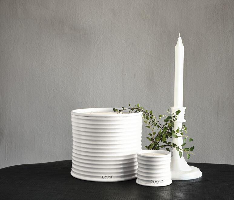 Oregano wax candleholder