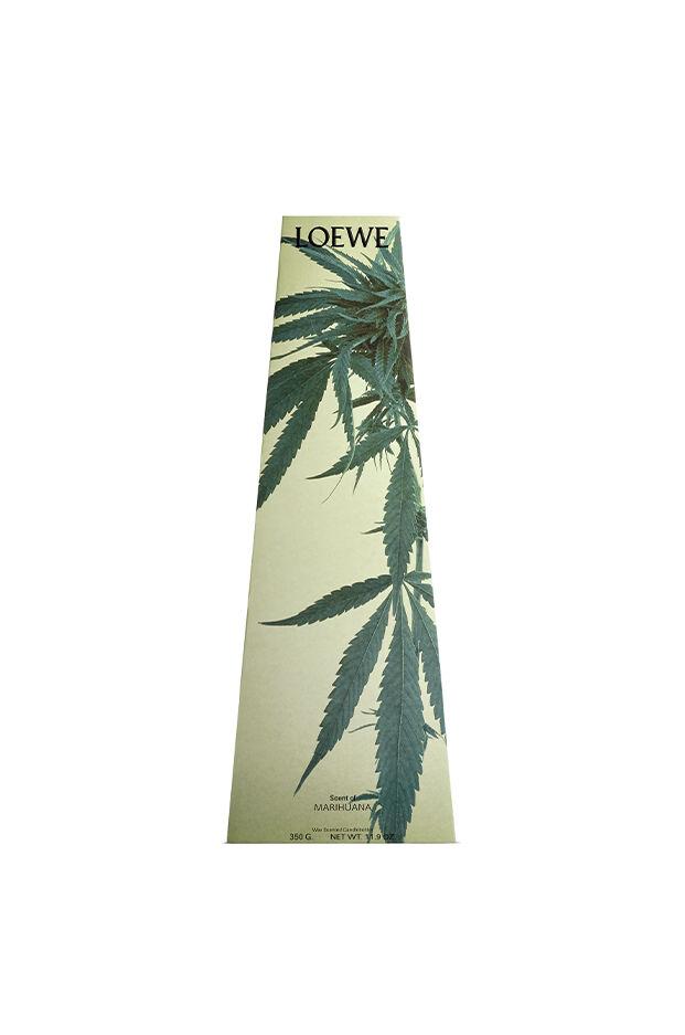 Candelabro de cera Scent of Marihuana