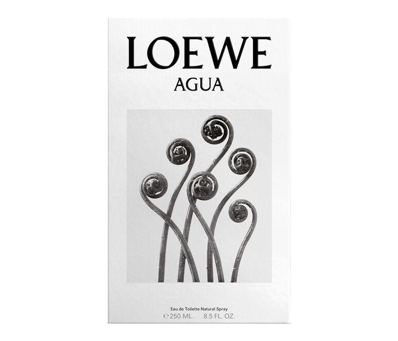 LOEWE Agua