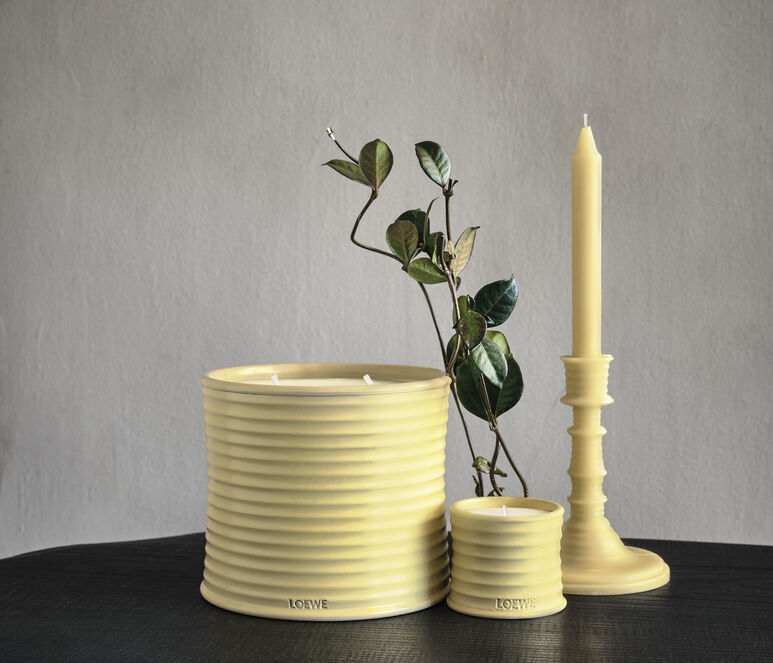 Honeysuckle wax candleholder