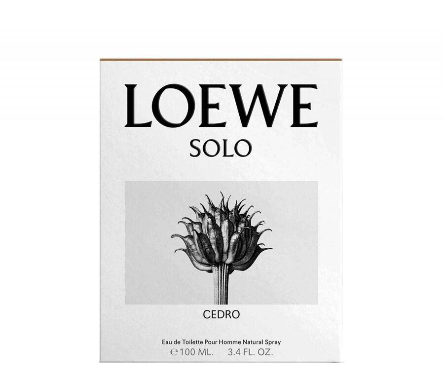 LOEWE Solo Cedro Classic