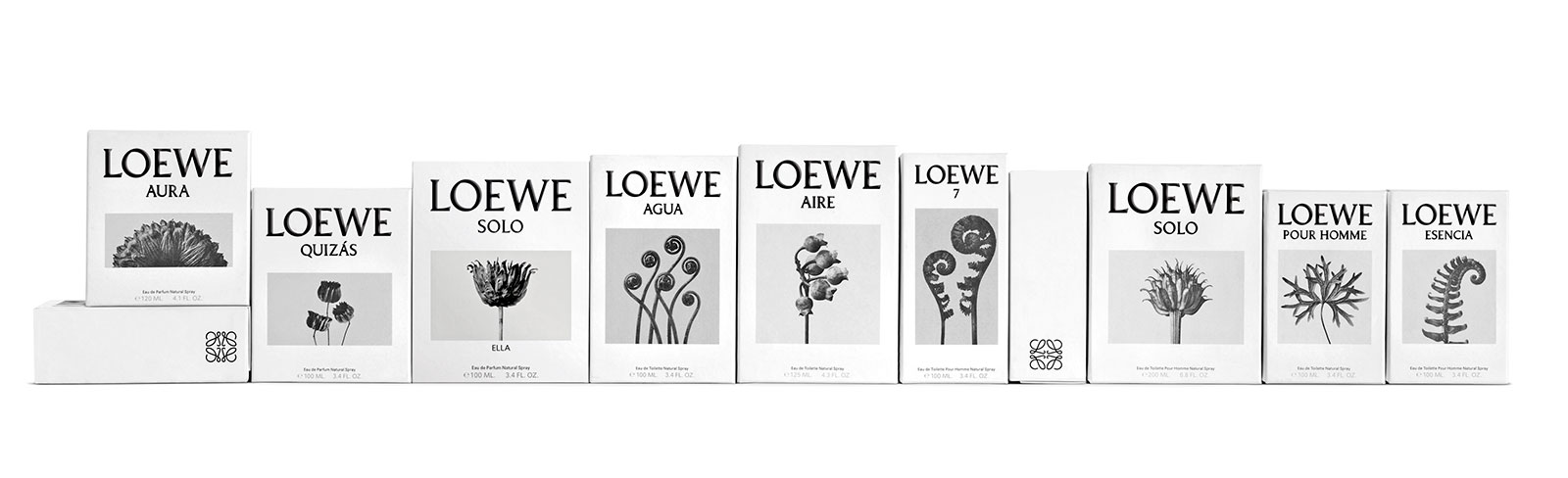 perfumes loewe.com ayere loco