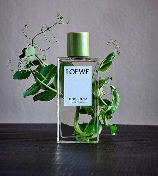 Perfumes LOEWE - Luscious Pea Home