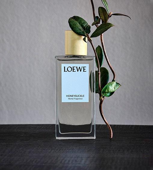 Perfumes LOEWE - Honeysuckle Home
