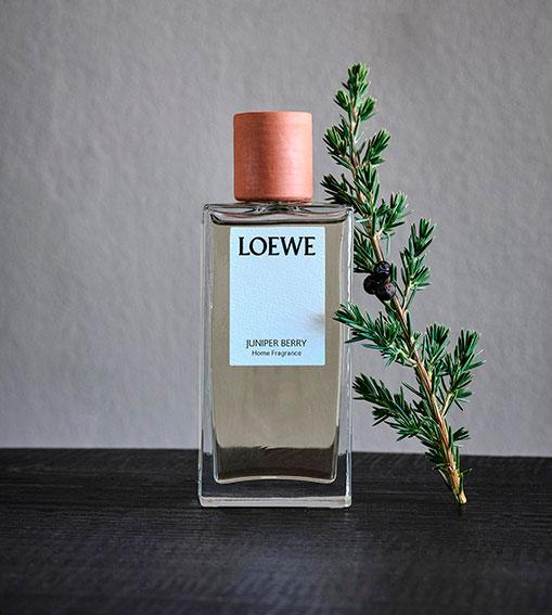 Perfumes LOEWE - Juniper Berry Home