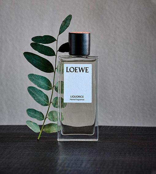 Perfumes LOEWE - Liquorice Home