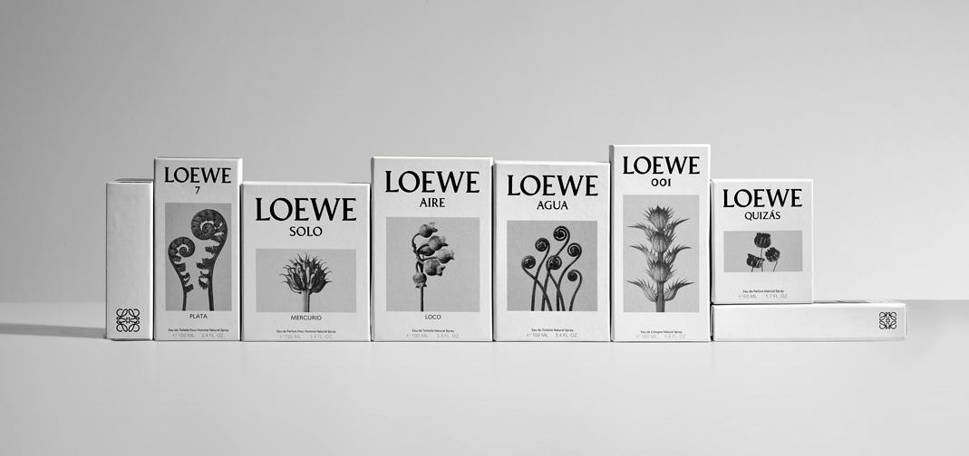 LOEWE_free_shipping