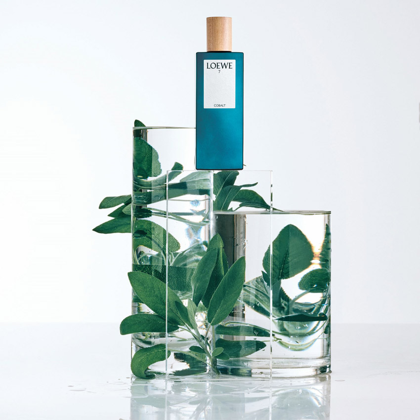 LOEWE Perfumes - 7 Cobalto
