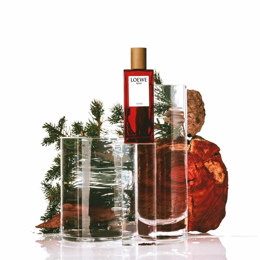 LOEWE Perfumes - Solo Cedro