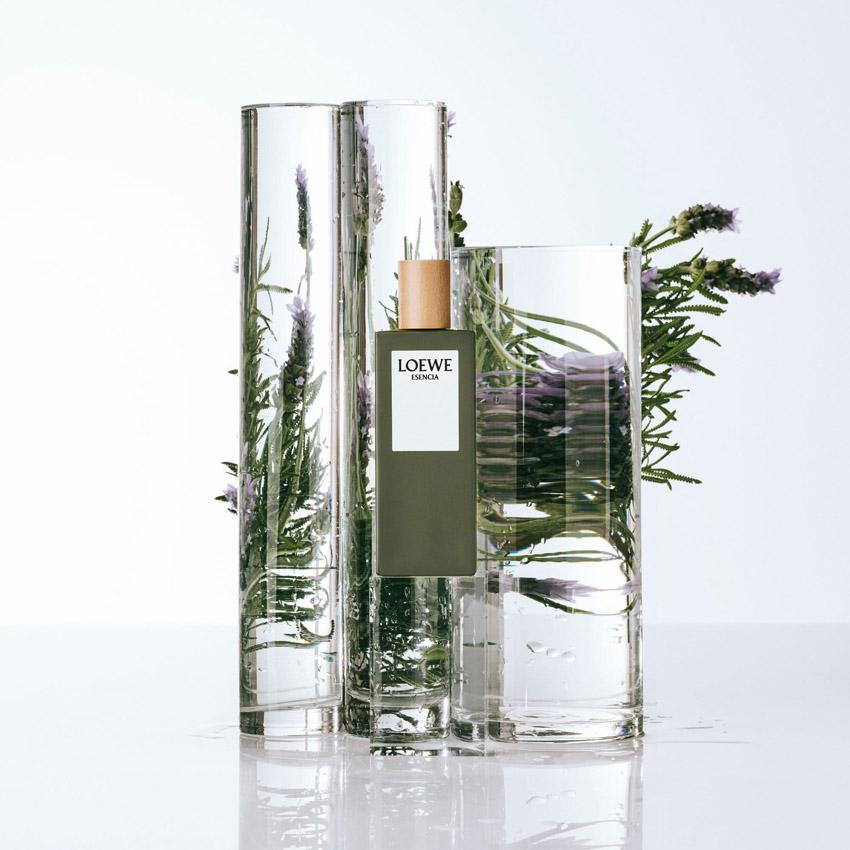 LOEWE Perfumes - Esencia EDT
