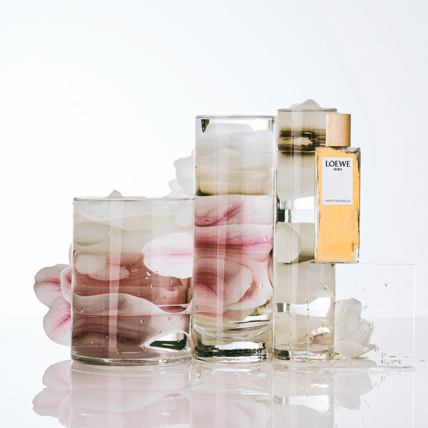 LOEWE Perfumes - White Magnolia