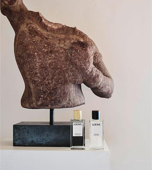 Perfumes LOEWE - Fragancias